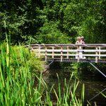 The Love bridge !
